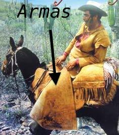 Cowboy wearing armas