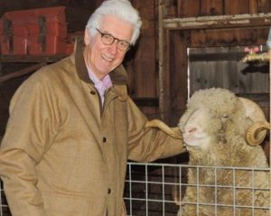 Tom Chappell with Rambouillet sheep